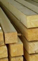 Красноярск на четыре дня станет мировым центром деревообработки